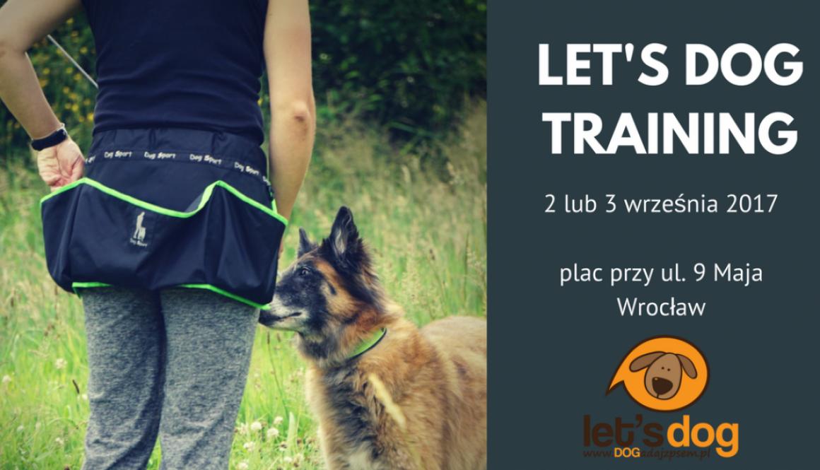 Weekendowy trening z psem – let's dog TRAINING