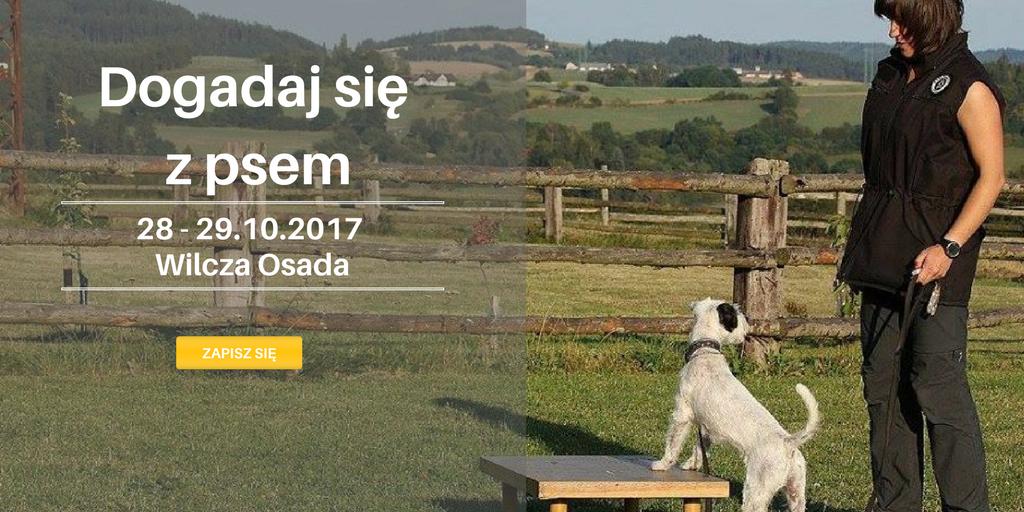 """Seminarium """"Praca z psem – od czego zacząć i jakich błędów unikać w treningu?"""""""